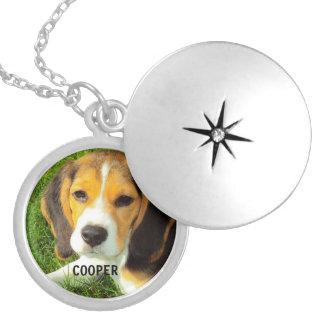 customize pet dog photo round locket necklace