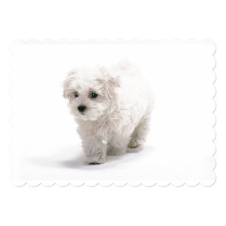 Customize Product 5x7 Paper Invitation Card