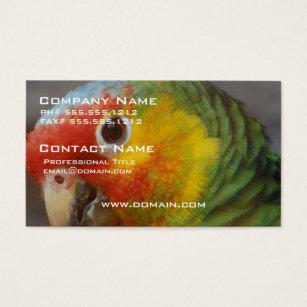 Amazon business cards templates zazzle customize product business card colourmoves Choice Image