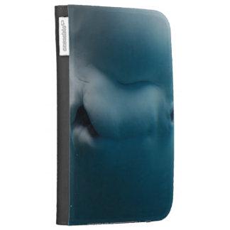 Customize Product Kindle Case