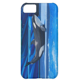 Customize Product Case For iPhone 5C
