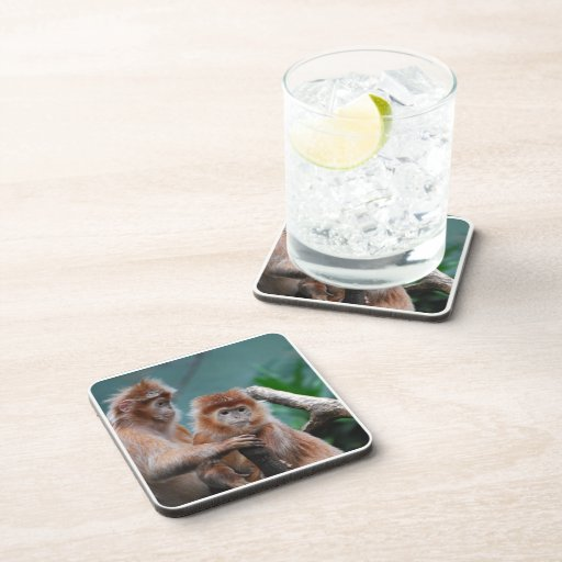 Customize Product Coaster