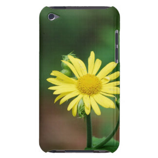 Customize Product - Customized Barely There iPod Cases