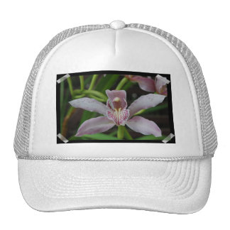 Customize Product - Customized Trucker Hat