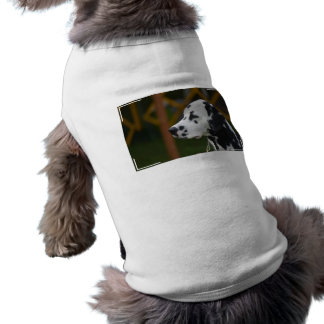 Customize Product Dog Clothes