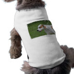 Customize Product Dog Shirt