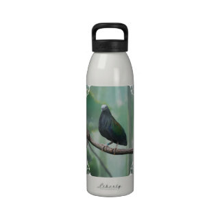 Customize Product Drinking Bottles