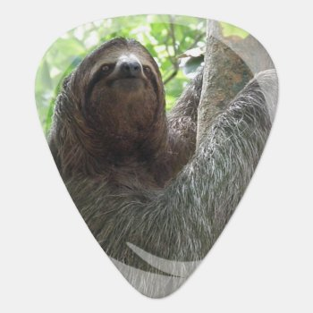 Customize Product Guitar Pick by WildlifeAnimals at Zazzle