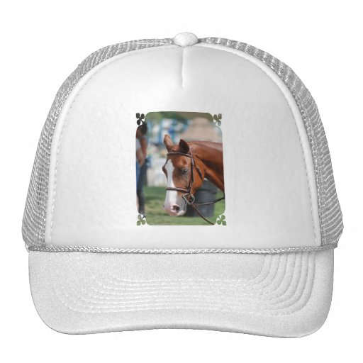 Customize Product Mesh Hats