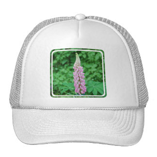 Customize Product Hat