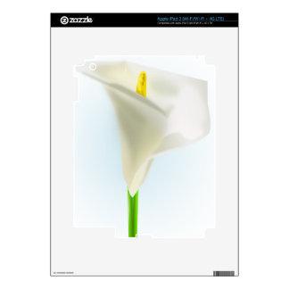 Customize Product iPad 3 Decals