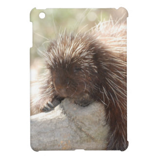 Customize Product Cover For The iPad Mini