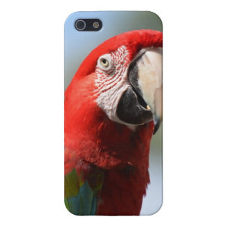 Customize Product Cases For iPhone 5