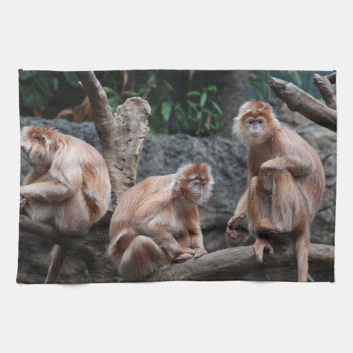Customize Product Hand Towel