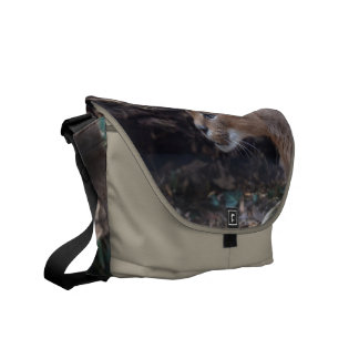 Customize Product Courier Bags
