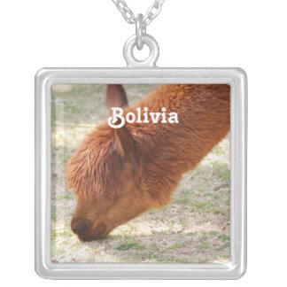 Customize Product Custom Necklace