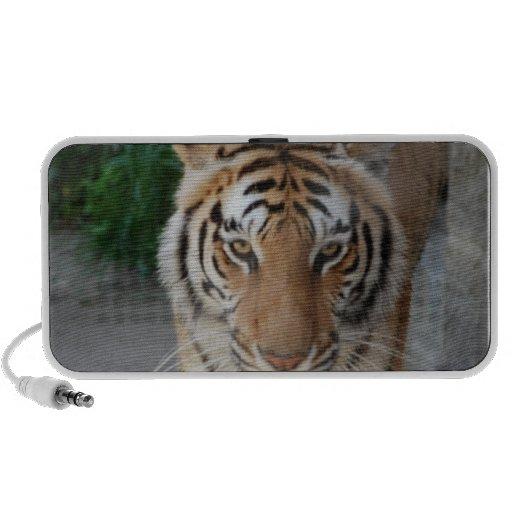 Customize Product Notebook Speaker