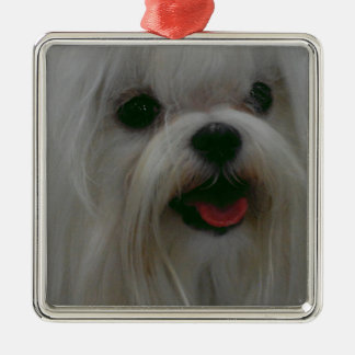 Customize Product Christmas Ornaments