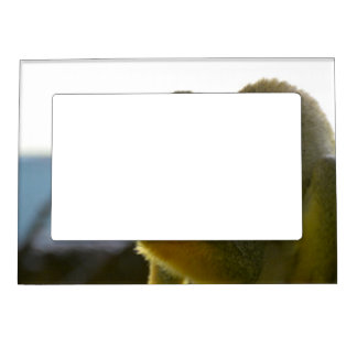 Customize Product Photo Frame Magnets