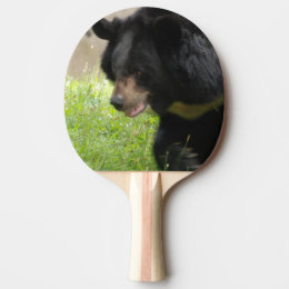 Customize Product Ping-Pong Paddle