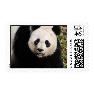 Customize Product Postage Stamps
