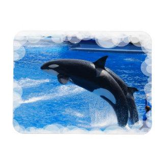 Customize Product Rectangular Photo Magnet