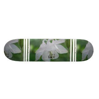Customize Product Skate Board Decks