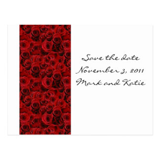Customize red rose postcard save the date