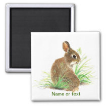 Customize this Curious Rabbit, Watercolor Animal Magnet