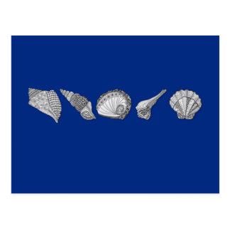 Customize This Original Seashell Art Postcard