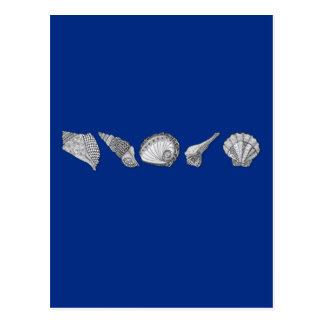 Customize this Seashell Original Design Postcard