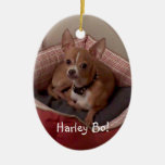 customize w/special photo Christmas Tree Ornaments