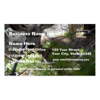 Customize Yearling Mule Deer - Estes Park Business Card Templates