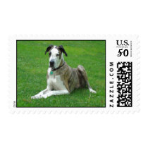 Customizeable Postage Stamp