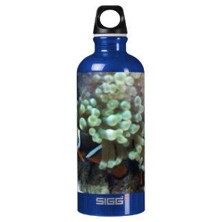 Customized 24oz Zazzle Aluminum Water Bottle