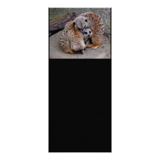 Customized Adorable Snuggling Meerkats Wildlife Custom Invitation
