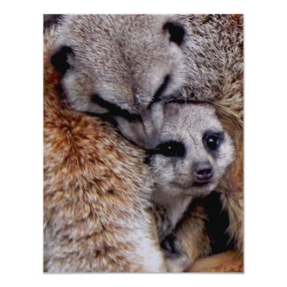 Customized Adorable Snuggling Meerkats Wildlife 4.25x5.5 Paper Invitation Card