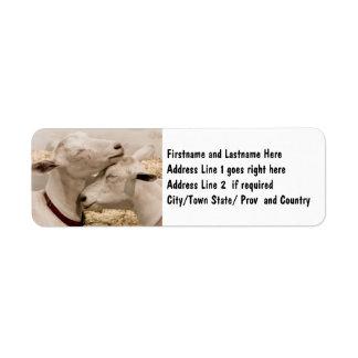 Customized Goat Farming Couple Label