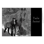 Customized Horse Invitations and Cards