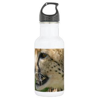 - Customized 18oz Water Bottle