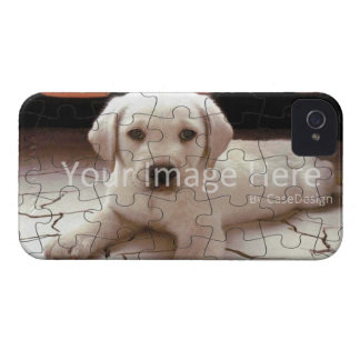 Customized Picture Puzzle Case Cover