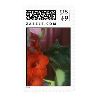 Customized Postage Stamps-Cat smelling fowers