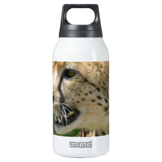 - Customized 10 Oz Insulated SIGG Thermos Water Bottle