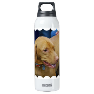 - Customized SIGG Thermo 0.5L Insulated Bottle