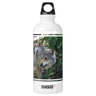 - Customized SIGG Traveler 0.6L Water Bottle