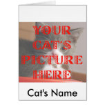 Customized Your Cat's Photo Card