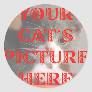 Customized Your Cat's Photo Round Stickers
