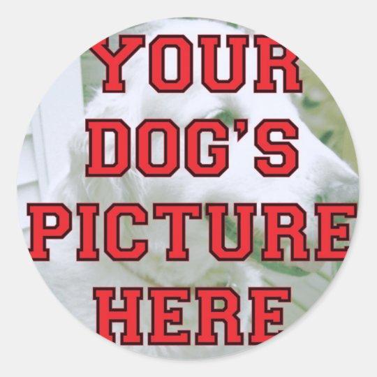 Customized Your Dog's Photo Classic Round Sticker