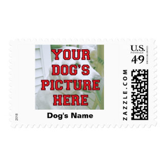 Customized Your Dog's Photo Postage
