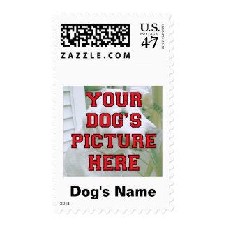 Customized Your Dog's Photo Postage